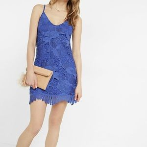 Express Blue Lace Trapeze Dress
